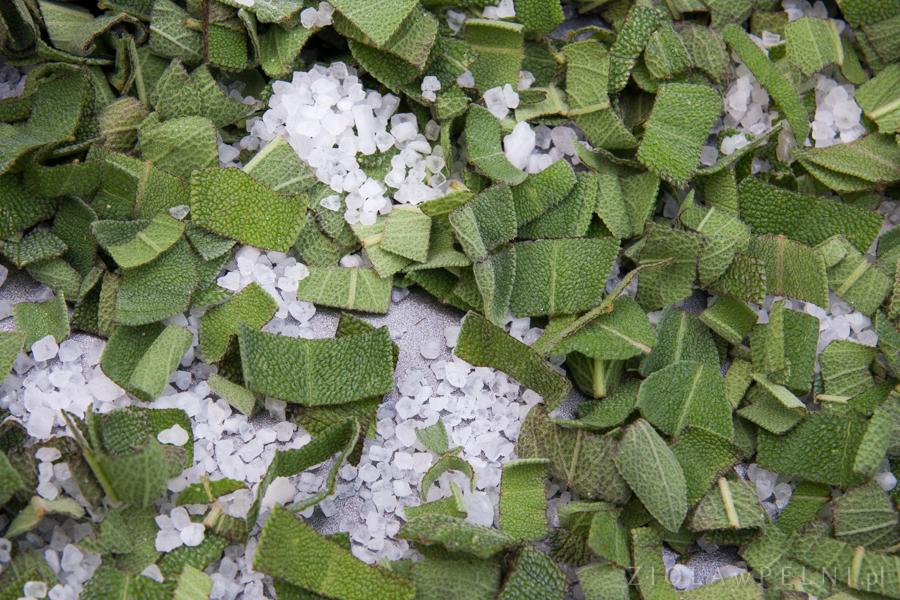 sól morska i szałwia - pasta do żebów