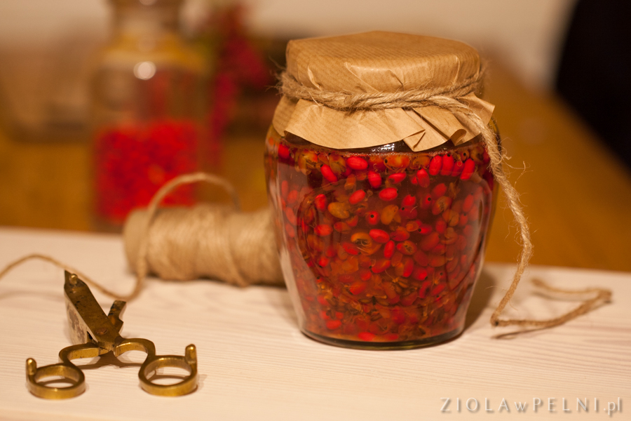 Nalewka z owoców berberysu